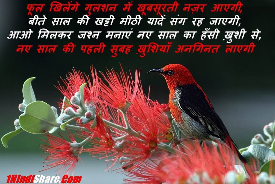New Year Wishes Messages Quotes Shayari Status Hindi